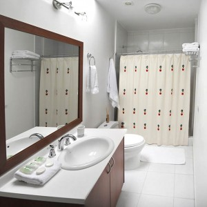 Mysachaji standard bathroom